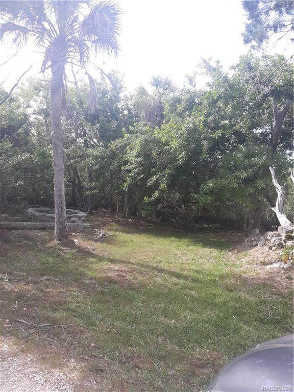 14067 W Siren Court, Crystal River, FL 34429 (MLS #791042) :: Plantation Realty Inc.