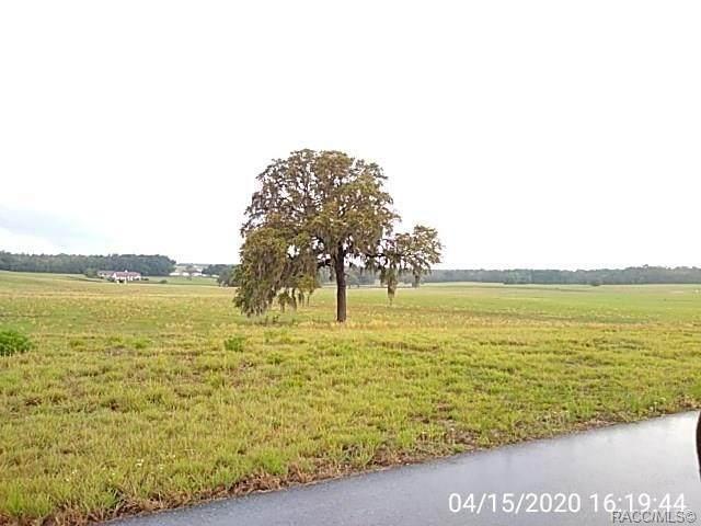 5730 E Orion Court, Floral City, FL 34436 (MLS #793527) :: Plantation Realty Inc.