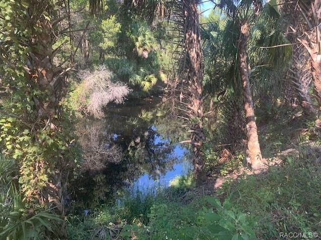 11162 River Walk Point - Photo 1