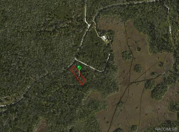10240 W Ozello Trail, Crystal River, FL 34429 (MLS #795160) :: Plantation Realty Inc.