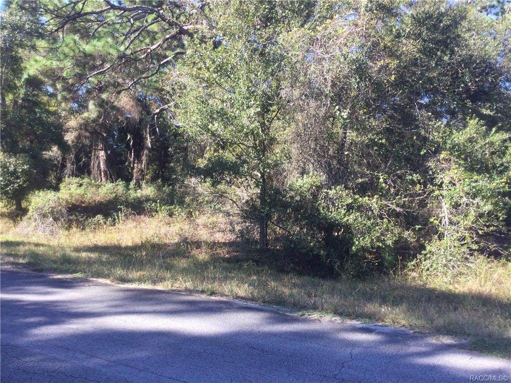 12524 Crystalview Lane - Photo 1
