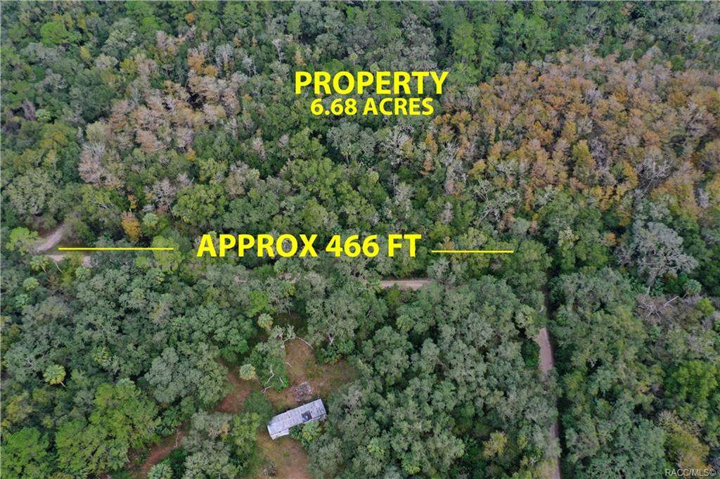 6241 Forest Trail Drive - Photo 1
