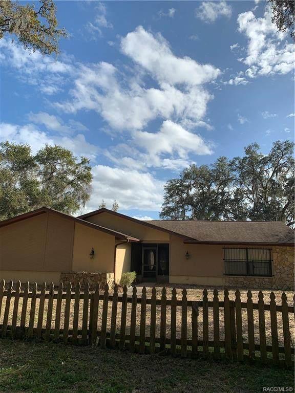 6450 N Goldenrain Circle, Hernando, FL 34442 (MLS #797135) :: Plantation Realty Inc.