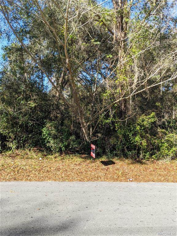 718 N Morris Avenue, Inverness, FL 34453 (MLS #797907) :: Plantation Realty Inc.
