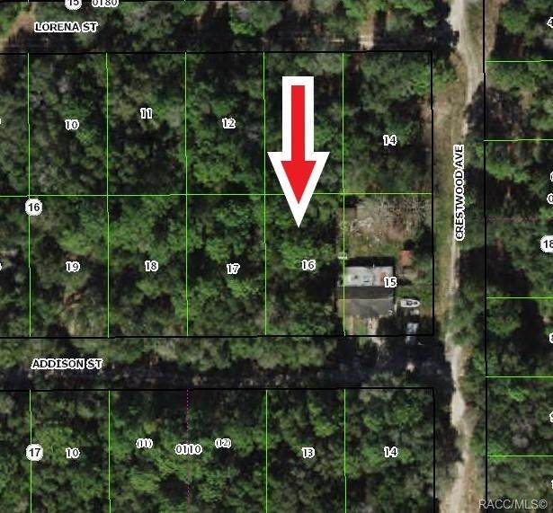 1902 Addison Street, Inverness, FL 34453 (MLS #798100) :: Plantation Realty Inc.