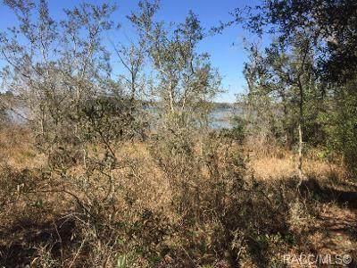 2208 SW Shorewood Drive, Dunnellon, FL 34431 (MLS #798974) :: Plantation Realty Inc.