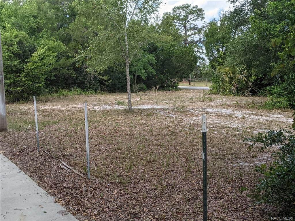 3940 Camp Izzard Place - Photo 1