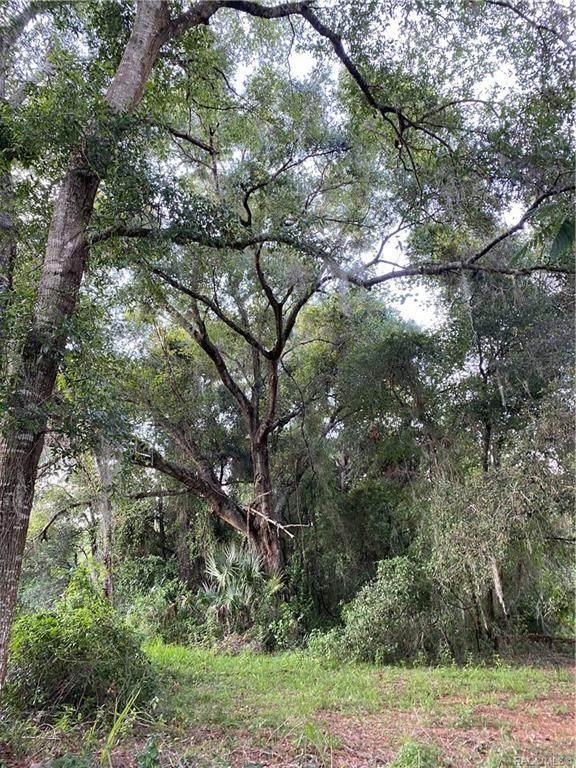 718 Hemlock Street, Inverness, FL 34452 (MLS #803868) :: Plantation Realty Inc.