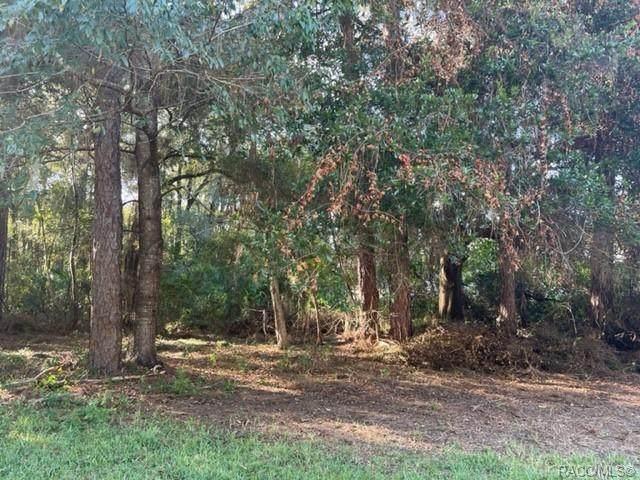 3900 S Ivanhoe Terrace, Inverness, FL 34452 (MLS #805829) :: Plantation Realty Inc.