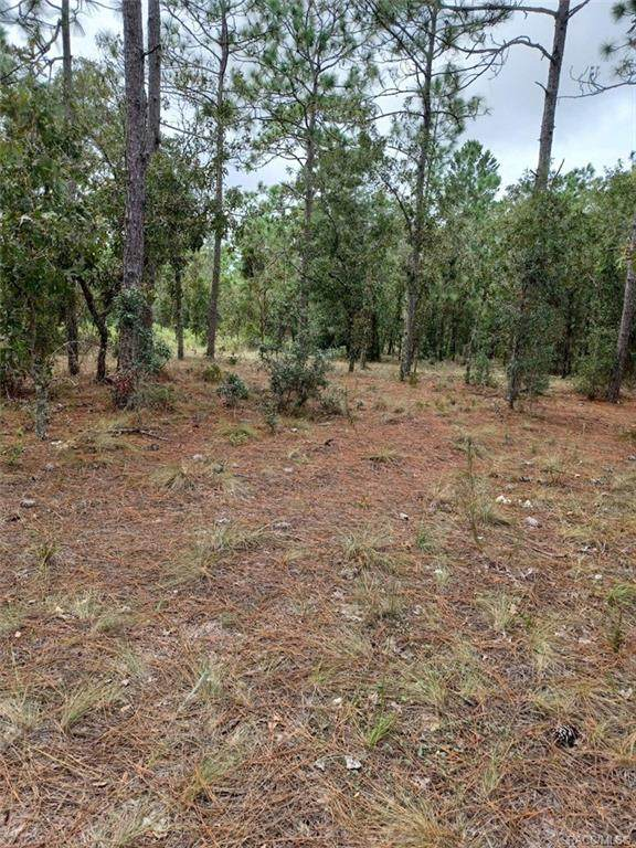 Lot 37 SW Timberlake Road, Dunnellon, FL 34431 (MLS #805868) :: Plantation Realty Inc.