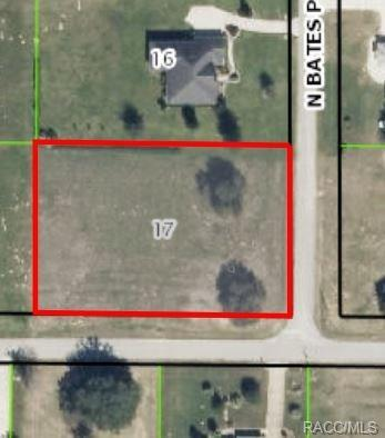 3142 N Bates Point, Hernando, FL 34442 (MLS #720841) :: Plantation Realty Inc.