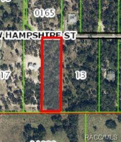2484 E Hampshire, Inverness, FL 34453 (MLS #720842) :: Plantation Realty Inc.