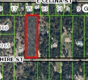 2547 E Hampshire Street, Inverness, FL 34453 (MLS #720843) :: Plantation Realty Inc.