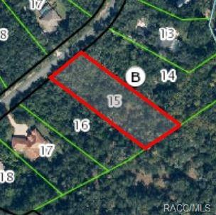 10464 N Natchez, Dunnellon, FL 34434 (MLS #720844) :: Plantation Realty Inc.