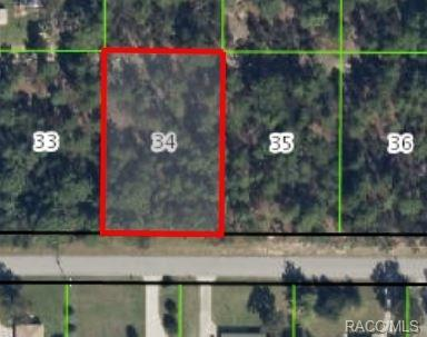 2521 E Newhaven Street, Inverness, FL 34453 (MLS #720845) :: Plantation Realty Inc.