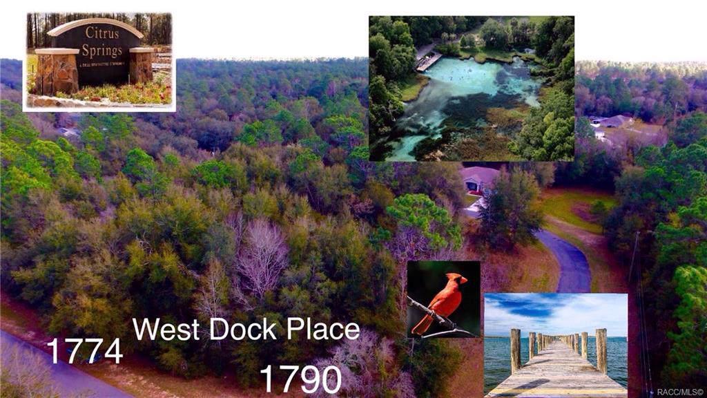 1774 Dock Place - Photo 1