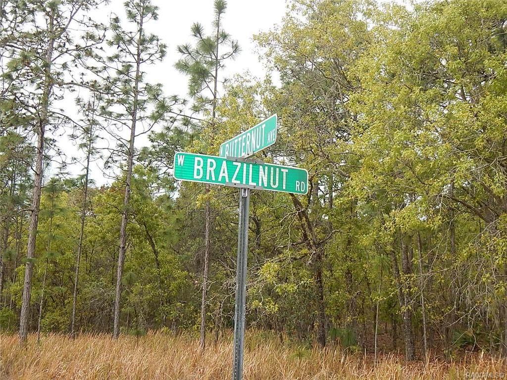 3425 Brazilnut Road - Photo 1