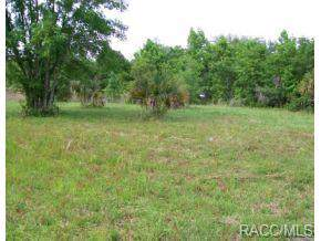 265 Merrymen Way N, Inverness, FL 34450 (MLS #321750) :: Plantation Realty Inc.