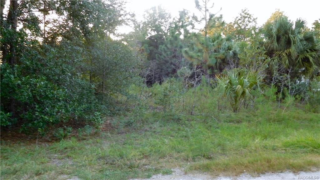 8654 Fauci Point - Photo 1