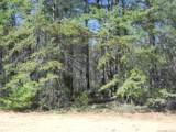 1011 Timber Spring Lane - Photo 1