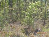 Lot 73 Blackberry Creek - Photo 3