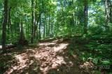 29 Open Ridge Trail - Photo 9
