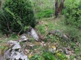 944 Hunter Creek Road - Photo 5