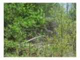 30 acre Otter Creek Road - Photo 12