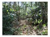 30 acre Otter Creek Road - Photo 16