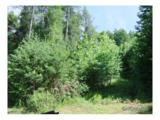 30 acre Otter Creek Road - Photo 4