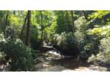Lot 9 Silver Maple Trail - Photo 19