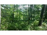 Lot 9 Silver Maple Trail - Photo 4