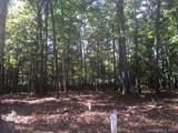 79 Running Creek Trail - Photo 3