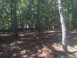 79 Running Creek Trail - Photo 6