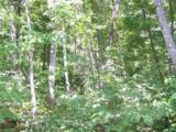Lot 71 Running Deer Lane - Photo 11