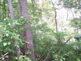 Lot 71 Running Deer Lane - Photo 2