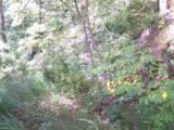 Lot 71 Running Deer Lane - Photo 5