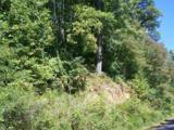 Lot 71 Running Deer Lane - Photo 7