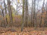 TBD Chestnut Ridge Road - Photo 1