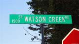 99 Watson Creek Road - Photo 9