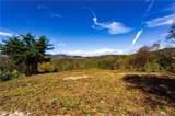 0000 Bearwallow Ridge Trail - Photo 28