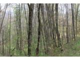 0000 Big Spring Trail - Photo 10