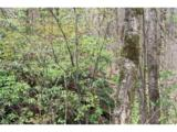 0000 Big Spring Trail - Photo 16