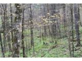 0000 Big Spring Trail - Photo 19