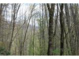 0000 Big Spring Trail - Photo 3