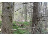 0000 Big Spring Trail - Photo 5