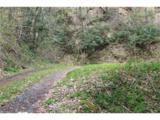 0000 Big Spring Trail - Photo 6