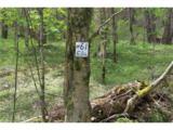 0000 Big Spring Trail - Photo 10
