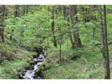 0000 Big Spring Trail - Photo 11