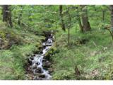 0000 Big Spring Trail - Photo 5